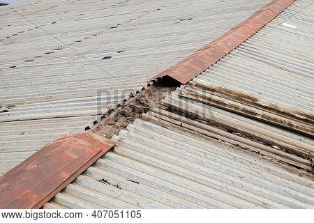 Old Damaged Metal Profiled Sheet Roof. Defective Steel Roof Ridge.