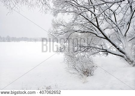 Beautiful Winter Landscape With Snow-covered Trees On The Edge Of The Forest And Frozen River Under