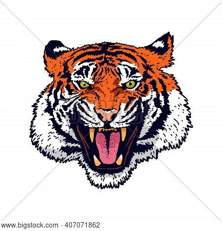 The Grin Of A Tiger. Angry Tiger Face. Detailed Drawing Of A Tiger. The Symbol Of The New 2022. Vect
