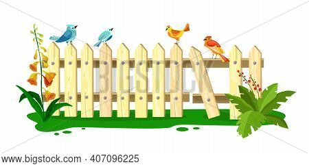 Wooden Vector Spring Fence Illustration, Picket With Sitting Birds, Grass, Flowers, Green Leaves, Is