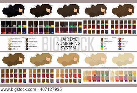 Stock Vector Palette With Hair Dye Numbering System, Levels, Tones And Undertones. Palette For 10 Le