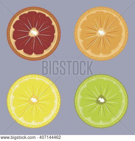 Set Of Colorful Citrus Fruits. Collection Of Drawing Orange, Lemon, Grapefruit And Lime. Citruses Ve