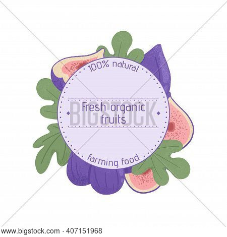 Ripe Figs Label Design. Sweet Figs Fruit, Whole And Half Sliced With Leaves Vector Hand Drawn Logo W