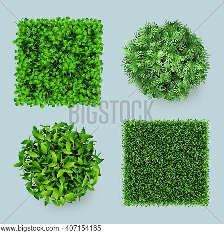 Grass Top. Green Ground Eco Gardens Forest Natural Leaves Plants Decent Vector Realistic Templates.