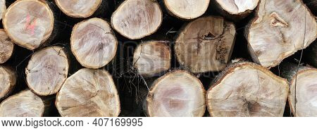 Stack Of Beech Logs In Closeup On Horizontal Picture