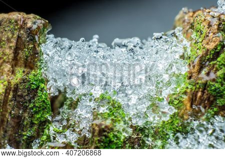 Texture Of Melting Ice Or Snow, Warming What Caused The Melting On The Old Tree, The Concept Of The