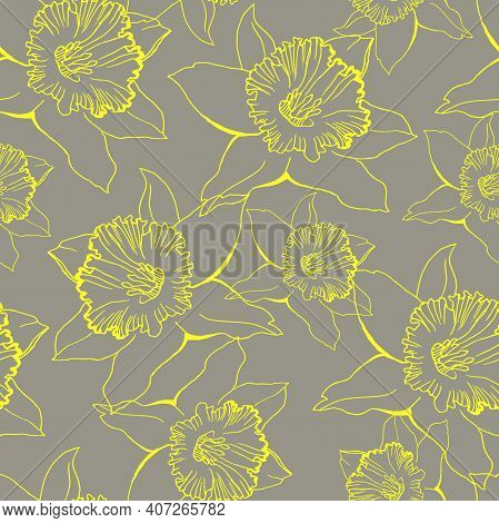Yellow Illuminating Closeup Daffodil Outline Flowers Drawn By Hand On Ultimate Gray Background. Flor