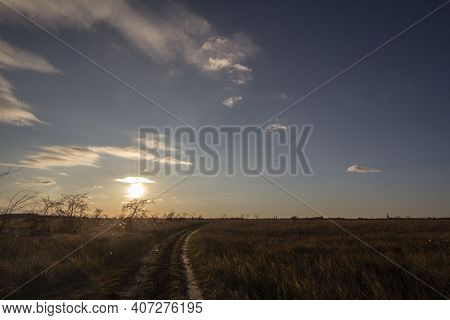 Hiking Sandy Dirt Path At Sunset In The Suboticka Pescara, Near The Serbia City Of Subotica, In Vojv