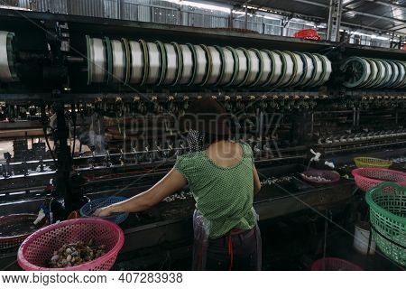Female Worker Wearing Mask Processing Silk Worms In A Silk Factory.