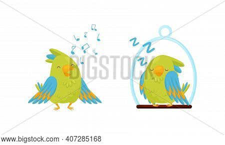 Cute Green Parrot Singing And Sleeping On Perch Vector Set