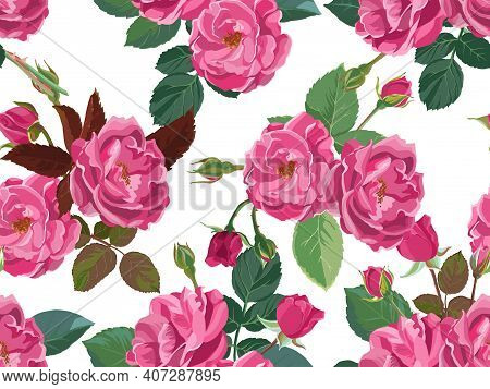 Pink Roses Or Peonies In Blossom Seamless Pattern