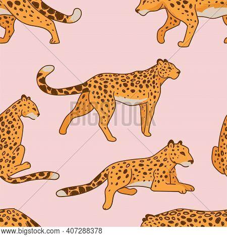 Leopard Feline Animal Laying And Walking Pattern