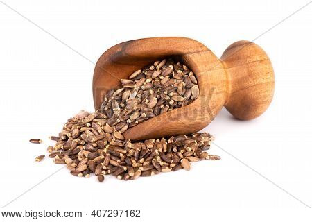 Milk Thistle Seed In Wooden Scoop, Isolated On White Background. Silybum Marianum, Scotch Thistle Or