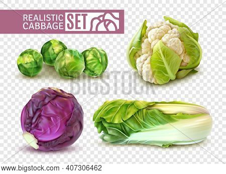 Realistic Set With Brussels Sprouts Chinese Cabbage Cauliflower Isolated On Transparent Background V