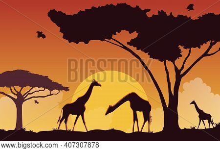 Giraffe Sunset Animal Savanna Landscape Africa Wildlife Illustration