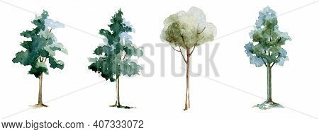 Green Tree Watercolor Illustration Set. Maple, Linden, Birch Trees. Hand Drawn Leafy And Evergreen T