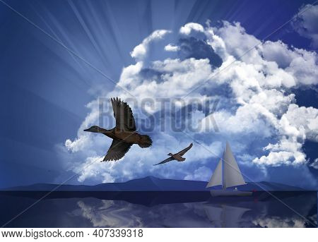 A Sailboat Is Seen As A Huge Storm Cloud Is Seen In The Sky Behind The Boat. Clouds, Mallard Ducks A
