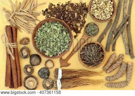 Adaptogen healthy food with herb and spices. Natural plant based foods that help the body deal with stress and promote or restore normal physiological functions. Flat lay on mottled yellow background
