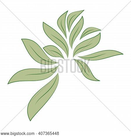 Green Leaves Isolated On White Background For Designs Eco Card. Vector Illustration.