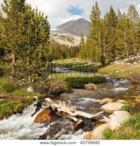 Whitney Creek, Sierra Nevada