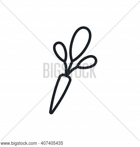 Horseradish Icon. Vector Linear Icon, Contour, Shape, Outline Isolated On A White Background. Thin L