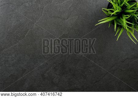 Top View Of  Table Or Countertop Of A Beautiful Dark Slate Stone With A Green Plant