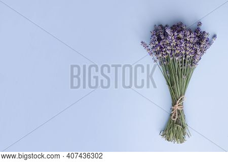 Top View Lavender Flowers In A Bunch On A Blue Background. Summer, Spring Minimal Concept With Copy