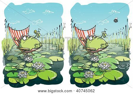 Frog Having Fun. Find 10 Differences. Solution in hidden layer poster