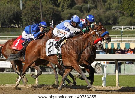 Goldencents Wins The 2013 Sham Stakes