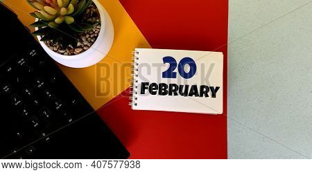 February 20 On A Multicolored Background On A White Notebook.next To It Is An Artificial Flower In A