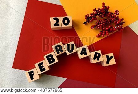 February 20 On A Multi-colored Background On Wooden Cubes.near Artificial Red Berries .winter.calend