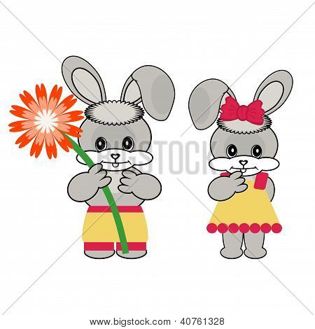 two nice hares on white background vector poster