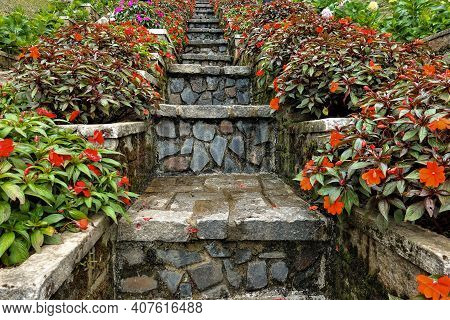 Design Details In The Park. A Narrow Stone Staircase Goes Up. On Both Sides Of It, Bright Red Flower