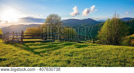 Trees Behind The Fence On The Grassy Meadow. Spring Rural Landscape In Evening Light. Distant Mounta