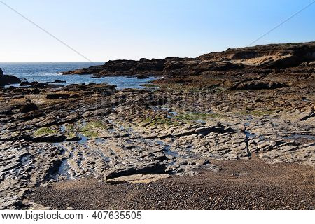 Landscape With Pacific Ocean Rocky Shore During Low Tide In Point Lobos State Natural Reserve. Calif