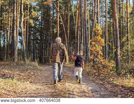 Happy Child With Grandfather Playing At The Forest. Grandpa Retiree. Retirement Parent. Portrait Of