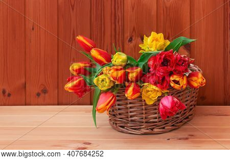 Colorful Fresh Tulips In Wicker Basket On Wooden Table. Selective Focus. View With Copy Space.