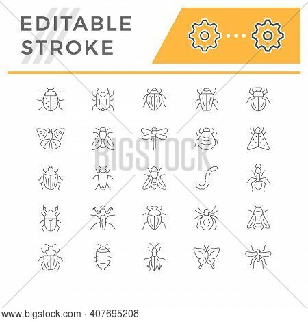 Set Line Icons Of Insects Isolated On White. Dragonfly, Spider, Cockroach, Grasshopper, Butterfly, F