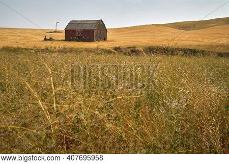 Rustic Red Barn Wheatfield. A Faded, Red Barn On A Hill In The Palouse. Washington State, Usa.
