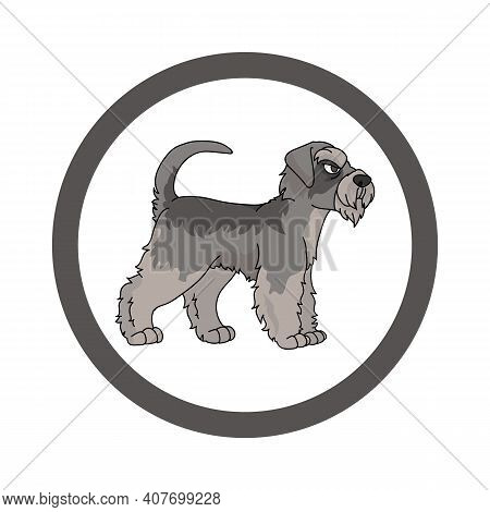 Cute Cartoon Schnauzer In Circle Dog Vector Clipart. Pedigree Kennel Doggie Breed For Kennel Club. P