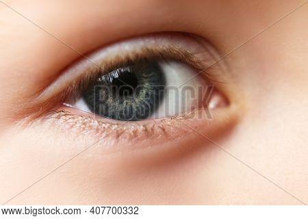 Close-up Eyes, Pupil Blue, Gray. Eyelashes Of Sight, Lenses. Sight.