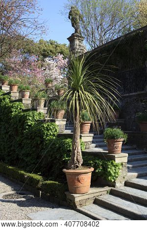 Stresa ( Verbano-cusio-ossola ), Italy - June 15, 2017: Isola Bella Garden, Maggiore Lake, Stresa, P