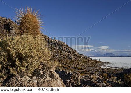 Fish Island At Salar De Uyuni, Salar De Tunupa, Worlds Largest Salt Flat, In The Altiplano Of Bolivi