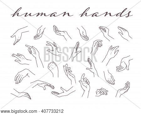 Collection Of Human Hands  In Different Gestures And Posses Isolated On White Background. Vector Han