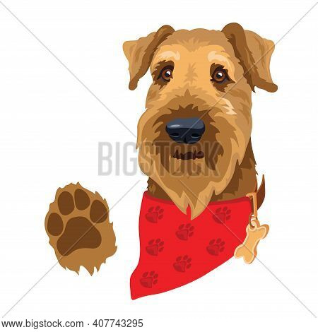 Dog Breed Airedale Terrier. Dogs Head With Red Bandana. Vector.