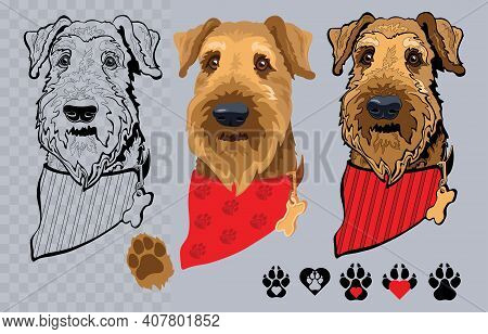 Dog Breed Airedale Terrier With Bandana. Colorful And Linear. Vector.