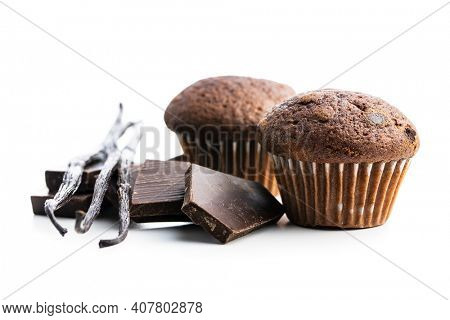 Chocolate muffins with chocolate bars and vanilla pods. Sweet dark cupcakes isolated on white background.