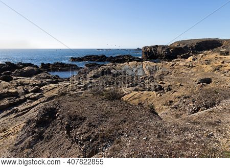 Landscape With  Pacific Ocean And Rocky Shore. Point Lobos State Natural Reserve, California,usa.