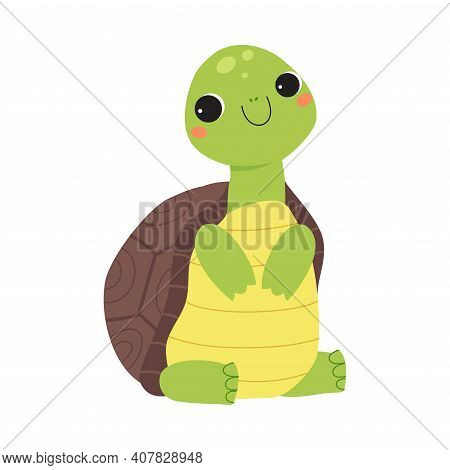 Happy Green Turtle Sitting And Smiling Vector Illustration