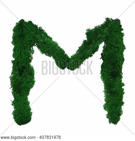 Letter M Of The English Alphabet Made From Green Stabilized Moss, Isolated On White Background